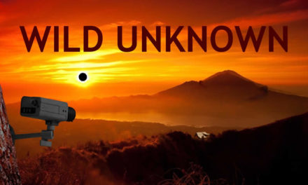Wild Unknown Available March 6th on Steam